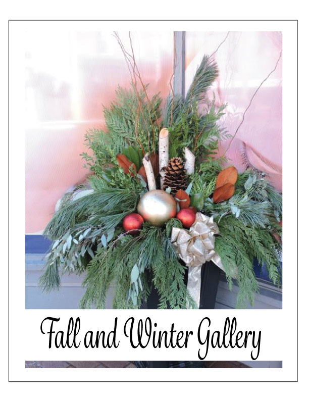 fall-and-winter-gallery
