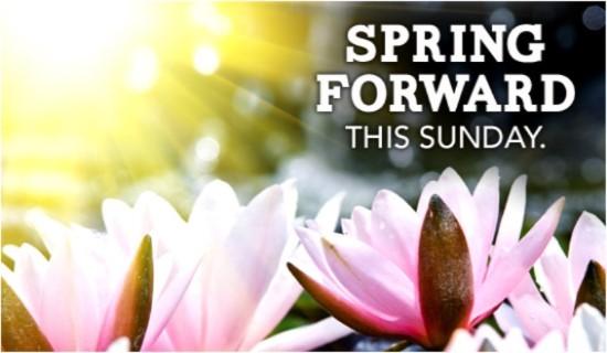 16241-spring-forward-flowers-sunshine.jpg